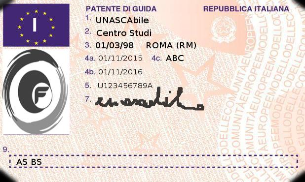 I codici sono riportati sulla pagina 2 (retro) della patente formato card si distinguono in codici: UE armonizzati (codici da 01 a 99), nazionali (codice 100 e superiori), validi nello Stato membro che ha rilasciato il documento;